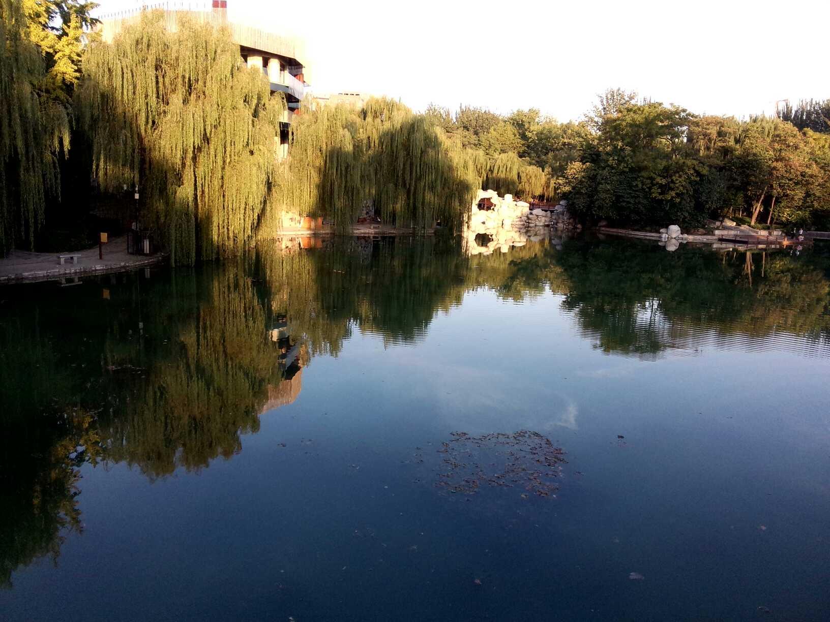 长乐公园湖(原动物园)
